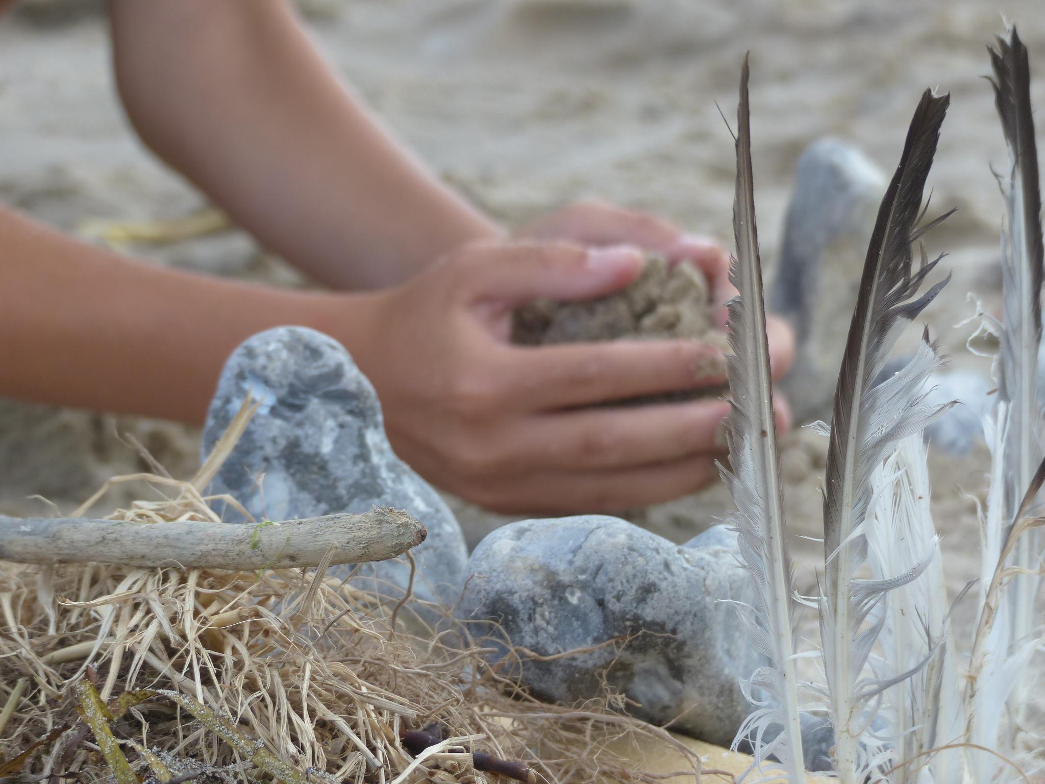 Aus den Ferien bringen Familien viele Fundstücke mit nach Hause, dazu gehören z.B. Federn, Steine, Muscheln und Schwemmholz