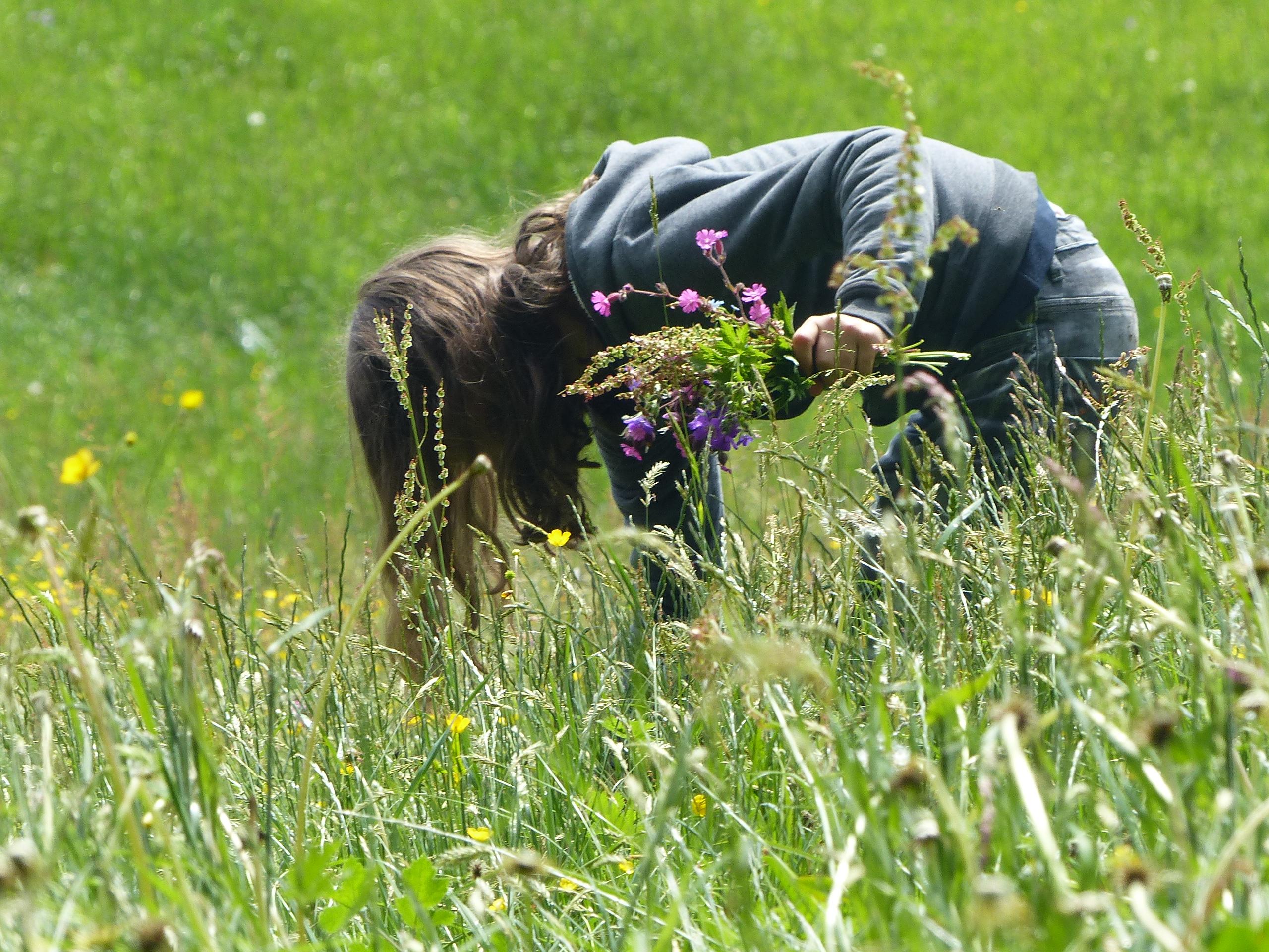 Wie das Mädchen auf dem Foto, sammelte Sabine Simeoni auch als Kind gerne Pflanzen trocknete sie und erstellte eigene Pflanzenbücher