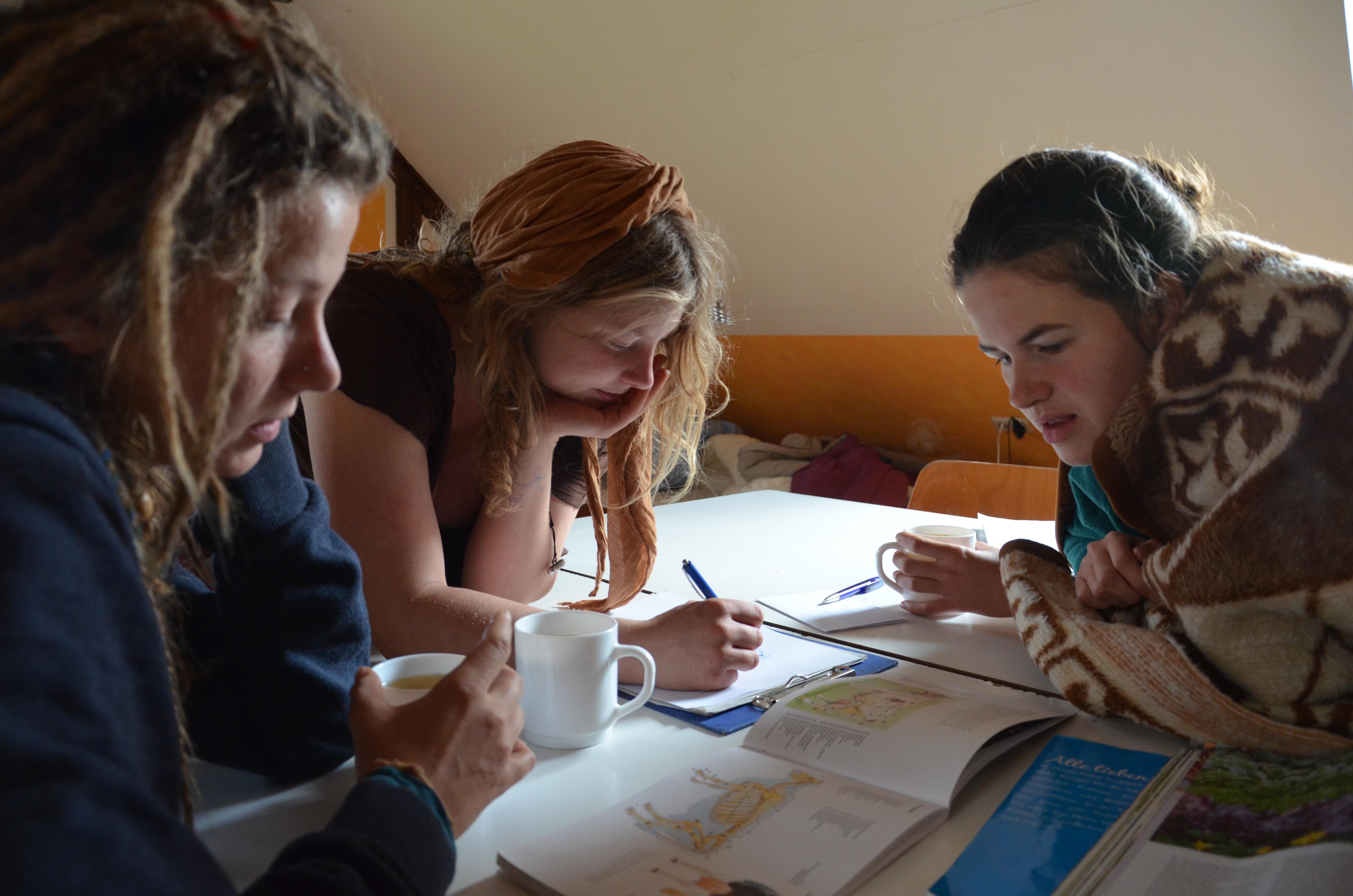 Gemeinsame Gruppenarbeiten findet in den Seminarräumen auf den Demeter Höfen statt. Durch den direkten vor Ort Charakter, ist ein vertiefendes Erarbeiten von Lerninhalten mit einem direkten Bezug möglich.