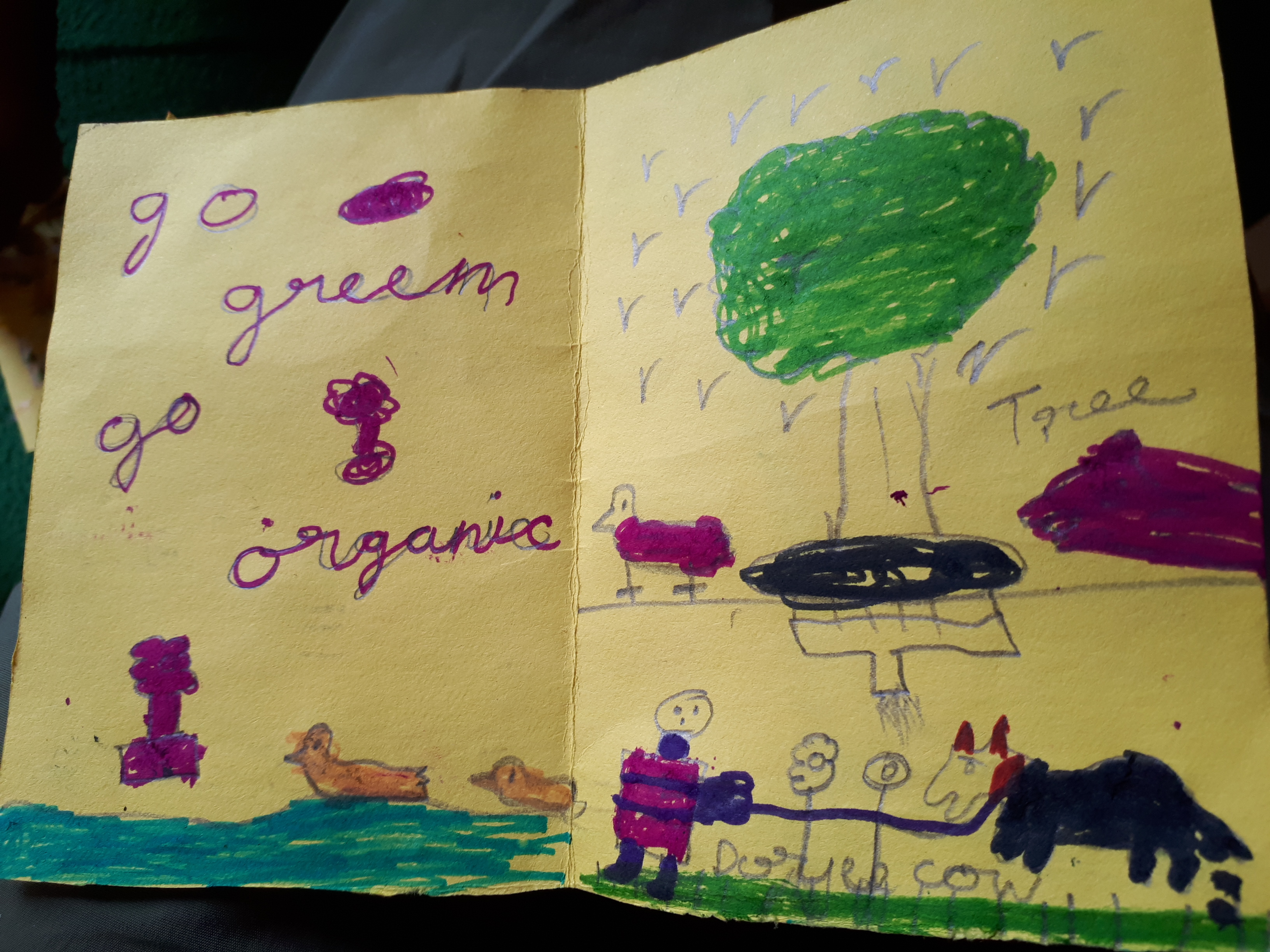"""Das Projekt """"goGreen goOrganic"""" fliesst in den Unterricht der Schüler mit ein"""