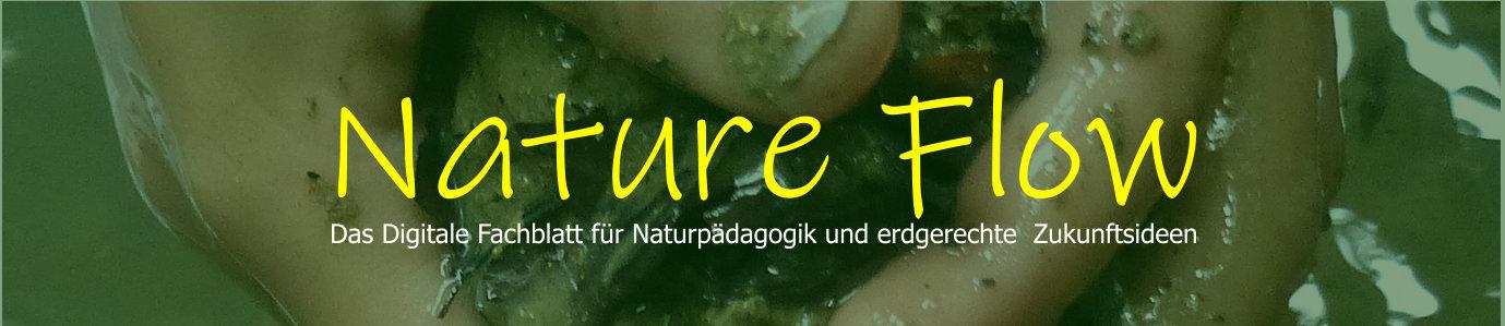 https://www.feuervogel.ch/infothek-waldkinder/