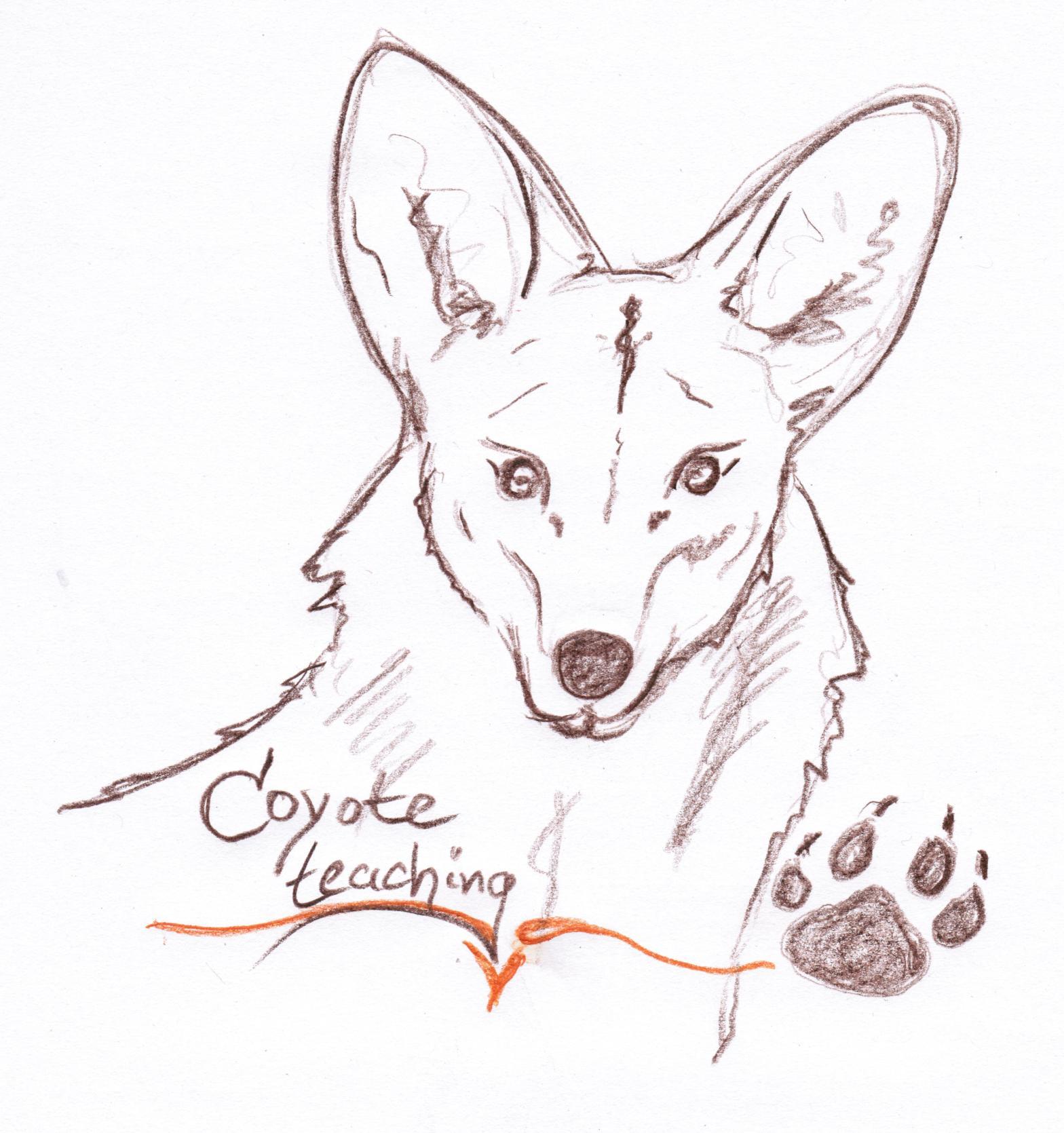 coyoteteach-1525199208-26.jpg