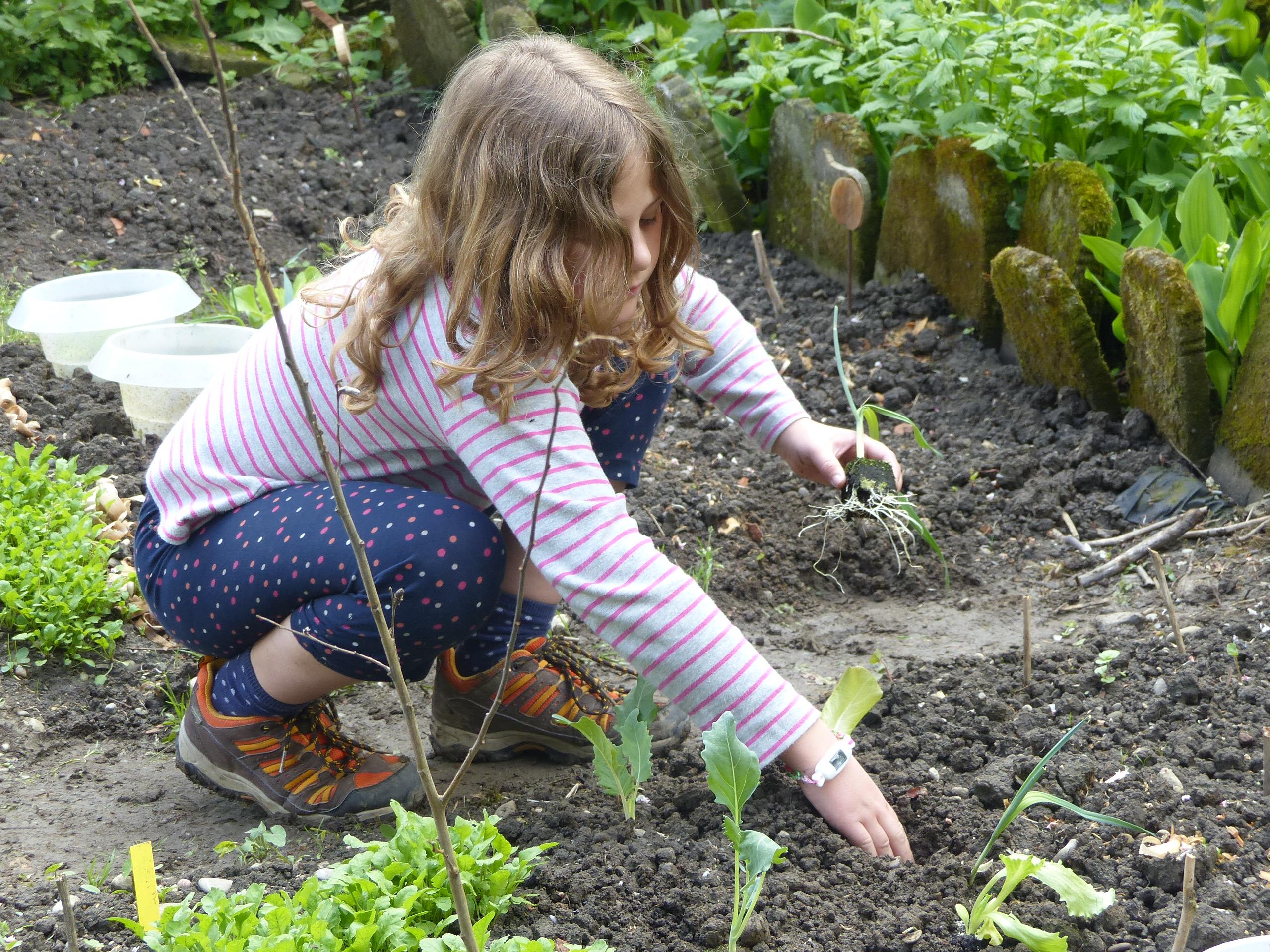 Kinder bringen eine spezielle Energie mit, wenn sie Samen oder kleine Pflanzen setzen