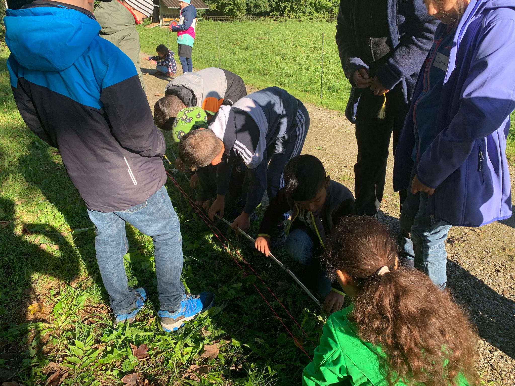 Mittels der Höhenbestimmungsmethode vermessen die Schüler und Schülerinnen die Länge eines Baumes