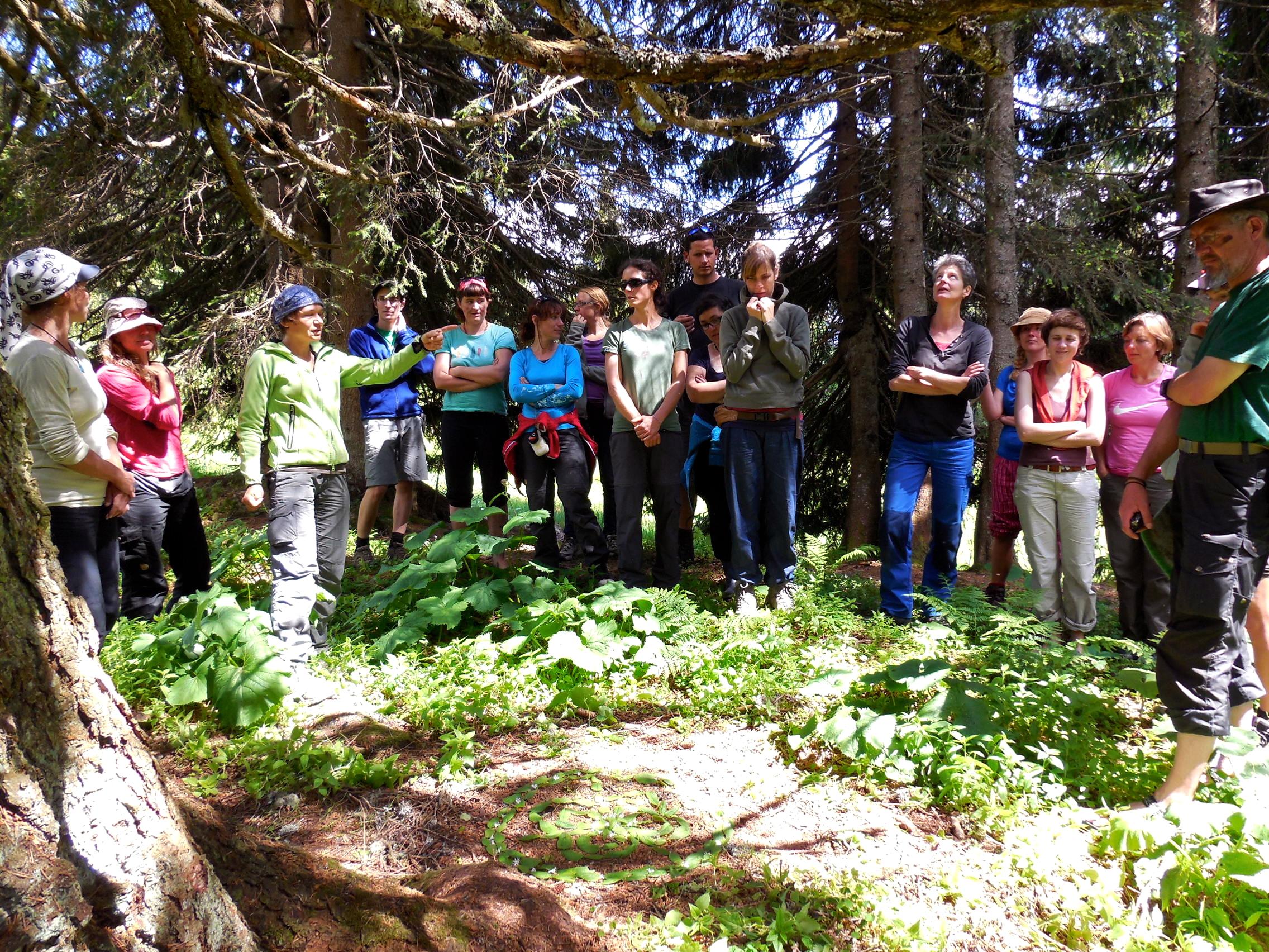 Feld, Wald und Wiese - Erlebnis-, Lebens- und Tagungsraum während der naturpädagogischen Weiterbildung
