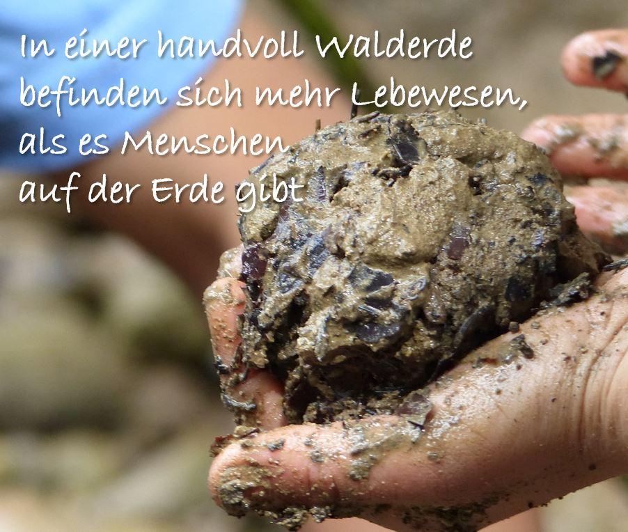 Foto © Nadja Hillgruber