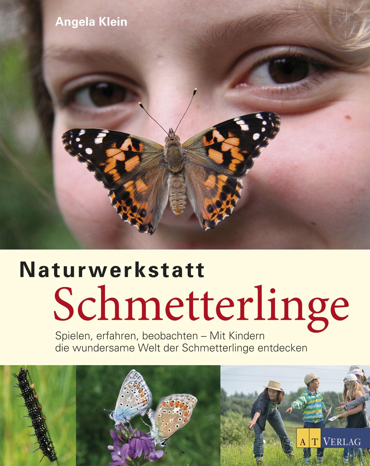 """Cover vom Buch """"Naturwerkstatt Schmetterlinge"""""""