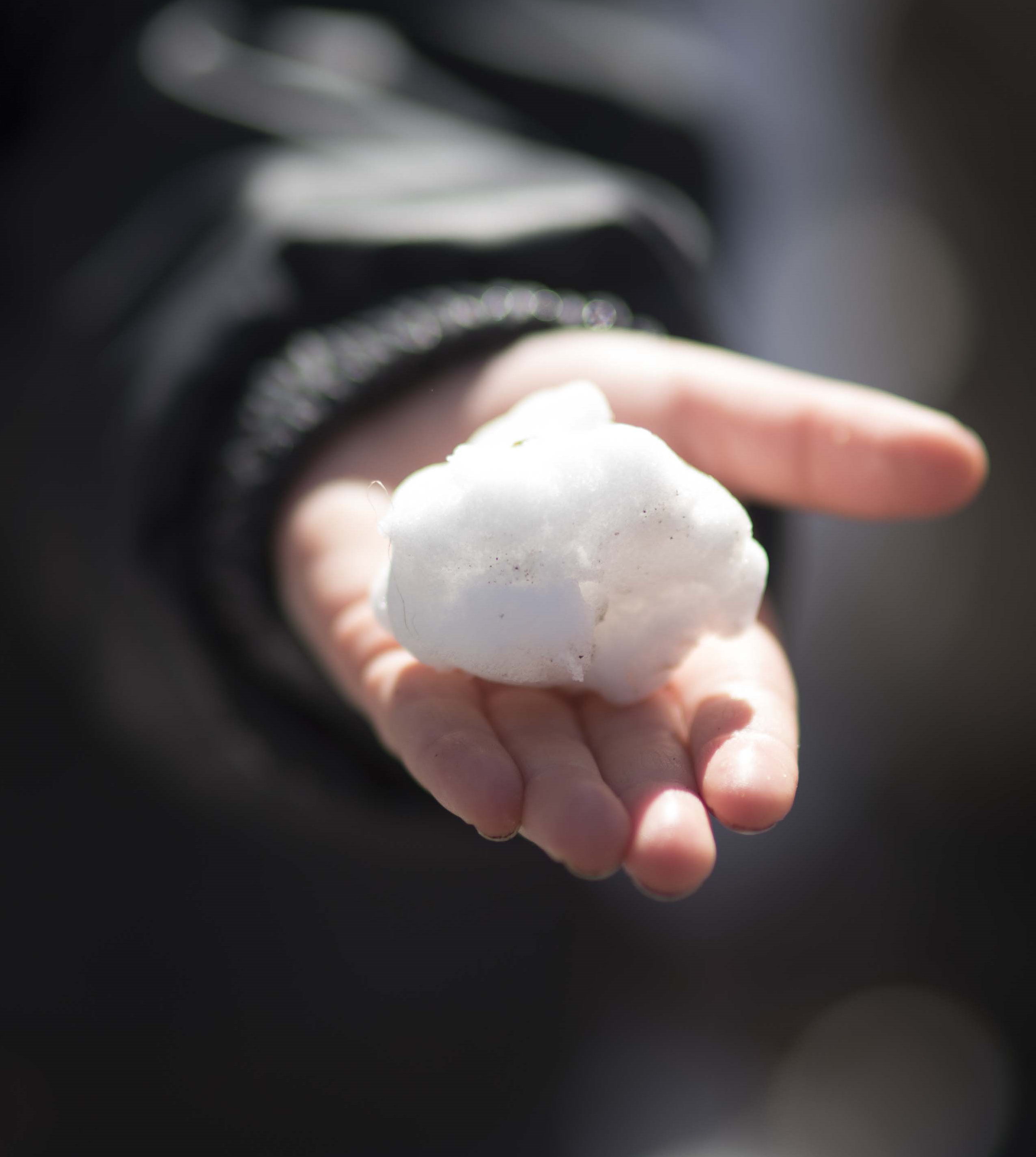 A snowball in the hand of a child - Photo by Rikke Rosengren