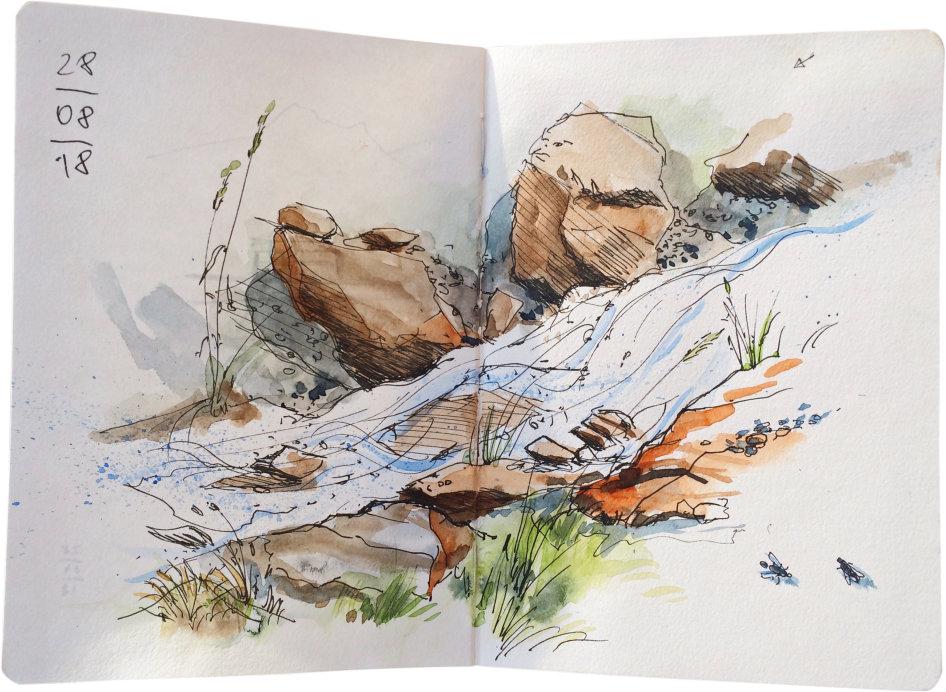 Wasser mit allen Sinnen in deiner Region erleben illustriert von Jens Hübner