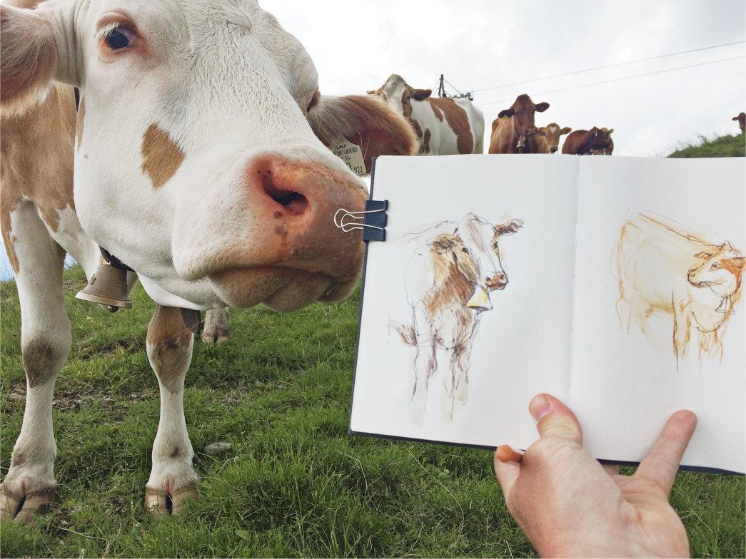 Tier beobachten an deinem Ort illustriert von Jens Hübner